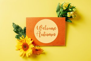"top view of orange card with ""welcom"