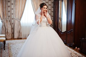 Portrait of a gorgeous bride posing