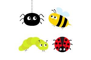 Ladybug, bee, caterpillar, spider.