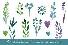 Watercolor nature elements. Vector
