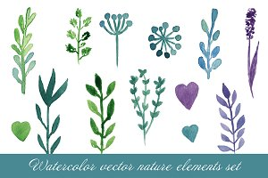 Watercolor nature elements. Vector