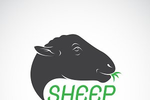 Vector of sheep head design. Animals