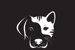 Vector of dog and cat face design.