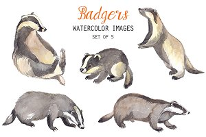 Watercolor Badgers Clipart