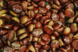a bunch of a chestnuts