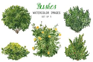 Watercolor Bushes Clipart