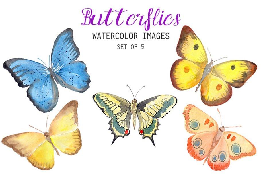 Watercolor butterfly. Butterflies clipart