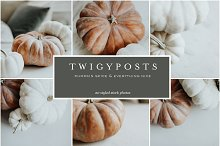 Fall Pumpkins | Stock Photo Bundle