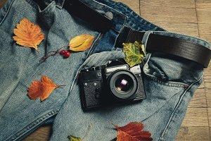 Composition of autumn leaves, retro