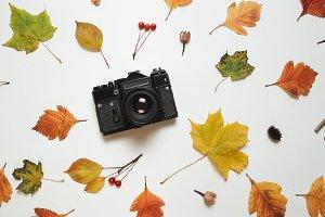 Vintage retro camera and floral