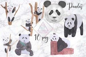 Watercolor Panda Clipart