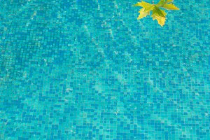 Blue water surface with yellow leaf.