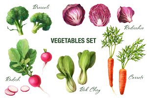 Vegetables Pencil Illustration Set