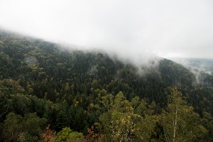 cloudy mountain and forest landscape