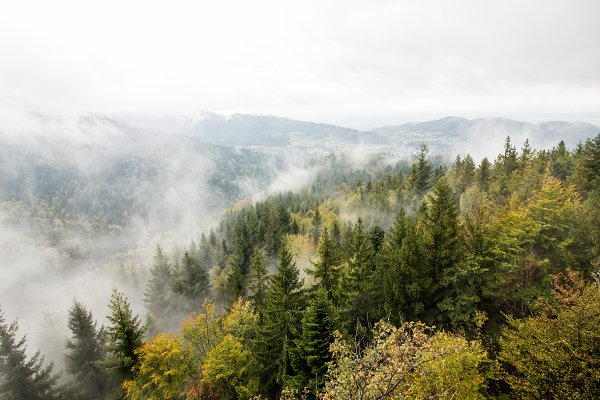 Nature Stock Photos - cloudy mountain and forest landscape