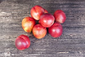 hybrids of nectarines