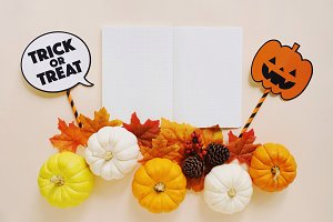 Flat lay of halloween props