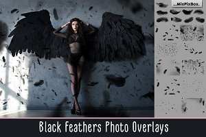Black Feathers Overlays