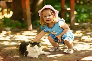 little toddler girl stroke cat close