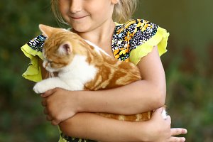 little girl hug cat close up photo o