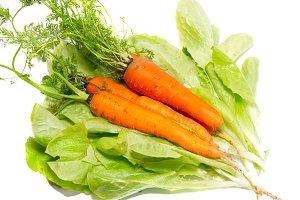 Bunch of carrots on green lettuce