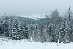 Early morning winter mountain landsc