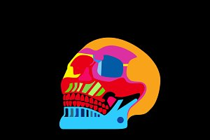 Day of the dead colorful skull icon