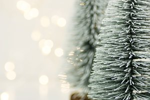 Fluffy snowy Christmas trees lights