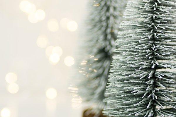 Fluffy snowy Christmas trees lights