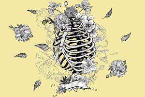 Skeleton Ribs and Flowers
