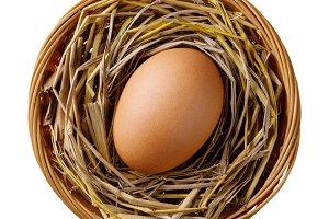 Chicken or hen egg on straw in wicke