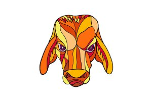 Brahma Bull Head Mosaic Color