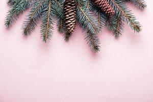 Christmas winter coniferous border w