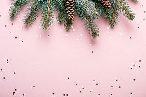 Christmas natural coniferous border