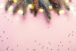 Christmas festive coniferous border