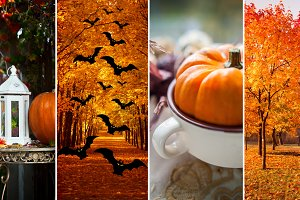 Halloween, autumn theme