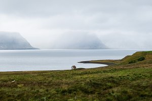 Lonely little house on the fjords