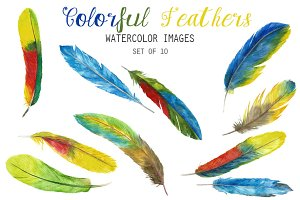 Watercolor Colorful Feathers Clipart