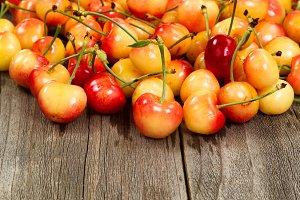 Ripe Rainier cherries on old wood