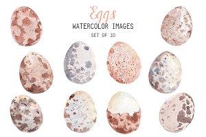 Watercolor Eggs Clipart