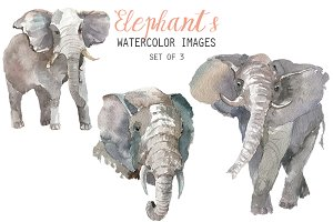 Watercolor Elephants Clipart