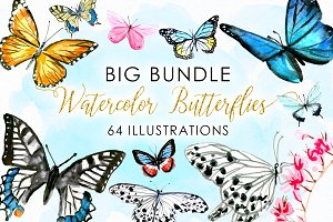 BIG Bundle Watercolor Butterflies