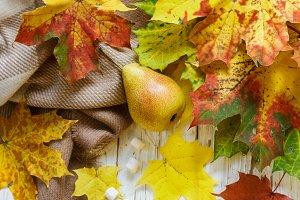 cocoa with marshmallows. autumn