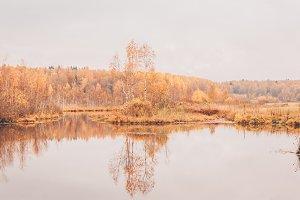 Golden autumn, landscape, reflection