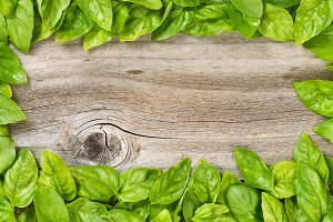 Basil border on rustic wood