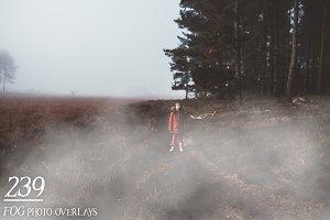 239 Fog Photo Overlays
