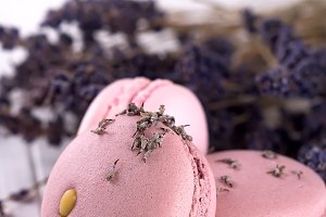 sweet lavender macaroons French with
