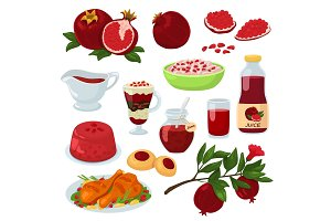 Pomegranate vector healthy food red
