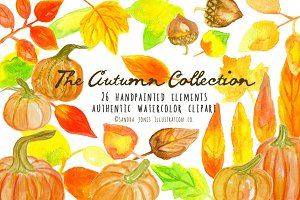 50% off! Autumn Watercolor Set