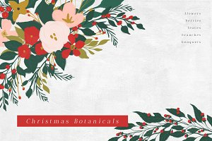 Christmas Botanicals